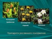 Препарати рослинного походження Кукурудзяні приймочки Безсмертник піщаний Шип...