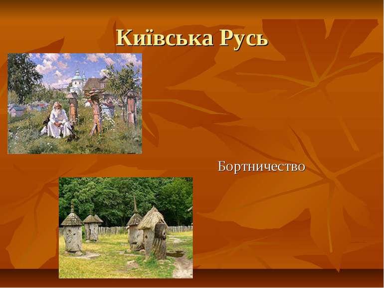Київська Русь Бортничество