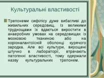 Культуральні властивості Трепонеми сифілісу дуже вибагливі до живильних серед...