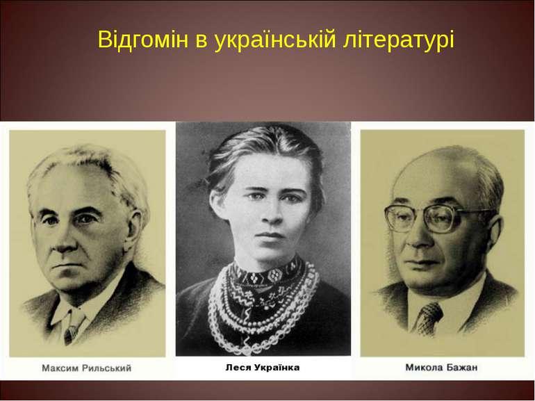 Відгомін в українській літературі