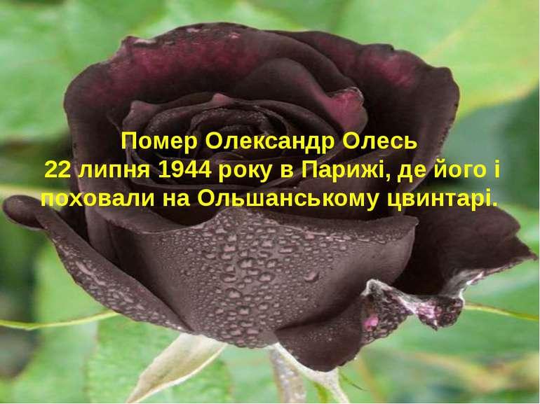 Помер Олександр Олесь 22 липня 1944 року в Парижі, де його і поховали на Ольш...