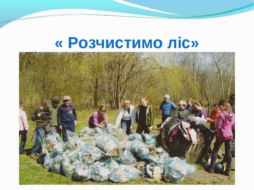 « Розчистимо ліс»