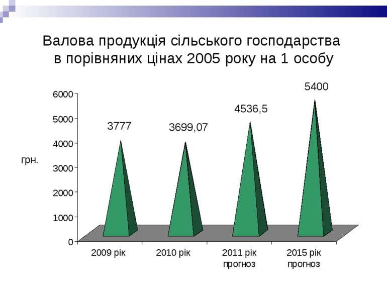 Валова продукція сільського господарства в порівняних цінах 2005 року на 1 особу