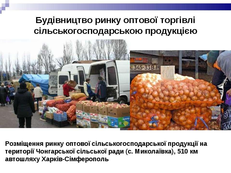 Будівництво ринку оптової торгівлі сільськогосподарською продукцією Розміщенн...