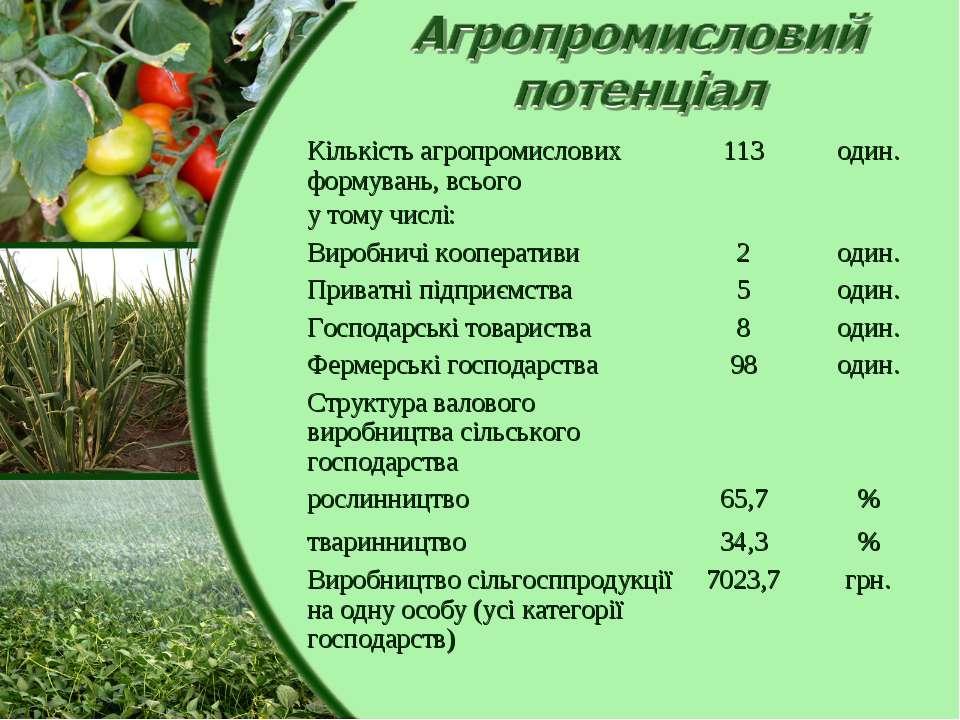 Кількість агропромислових формувань, всього 113 один. у тому числі:   Вироб...