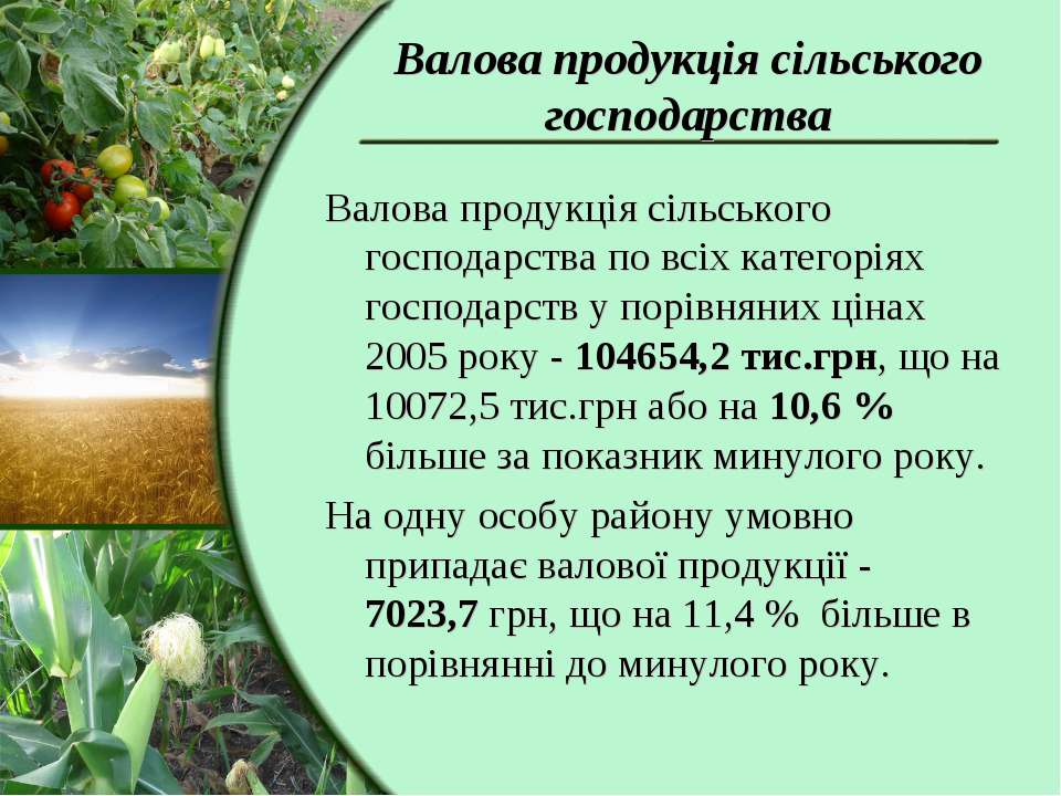 Валова продукція сільського господарства Валова продукція сільського господар...