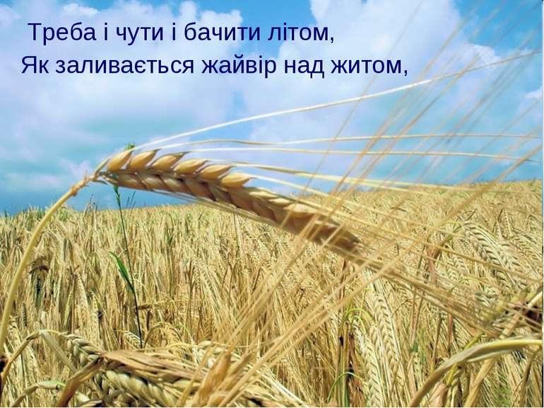 Треба і чути і бачити літом, Як заливається жайвір над житом,
