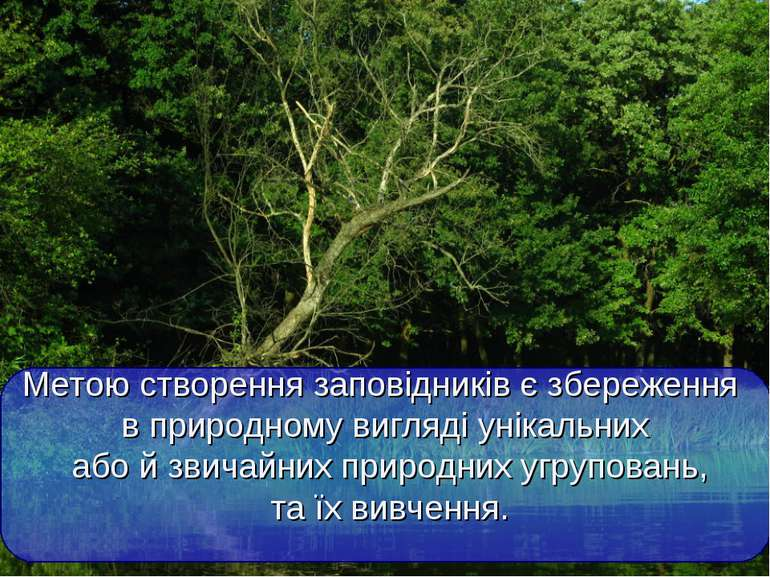 Метою створення заповідників є збереження в природному вигляді унікальних або...