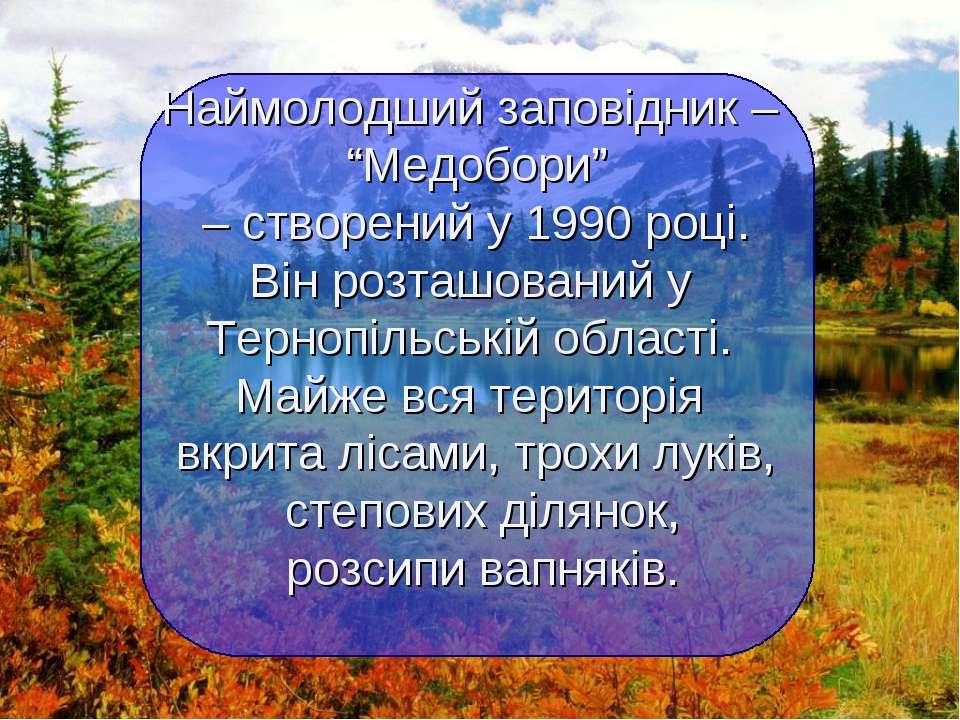 """Наймолодший заповідник – """"Медобори"""" – створений у 1990 році. Він розташований..."""