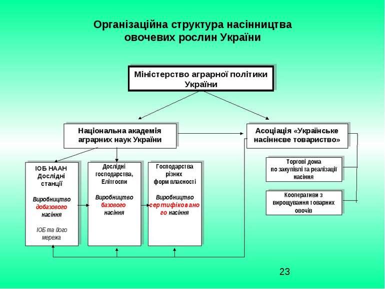 Організаційна структура насінництва овочевих рослин України Міністерство агра...