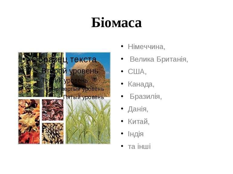 Біомаса Німеччина, Велика Британія, США, Канада, Бразилія, Данія, Китай, Інді...