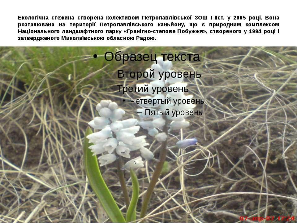 Екологічна стежина створена колективом Петропавлівської ЗОШ І-ІІст. у 2005 ро...