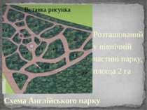 Схема Англійського парку Розташований у північній частині парку, площа 2га