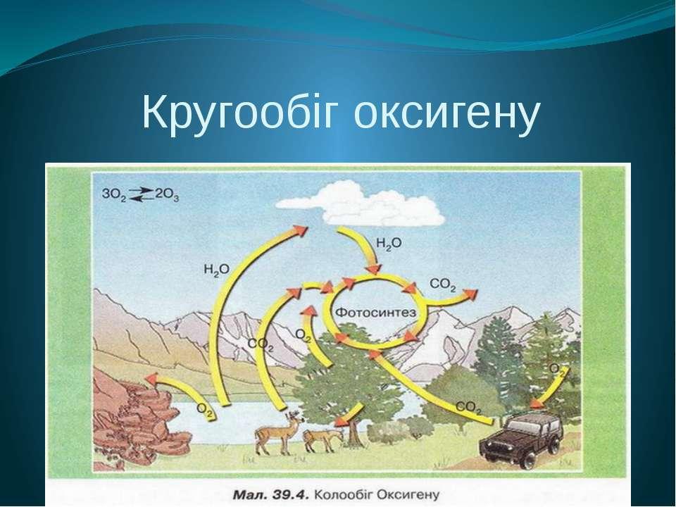 Кругообіг оксигену Рослинний покрив Землі щороку виділяє в атмосферу 5 • 1011...