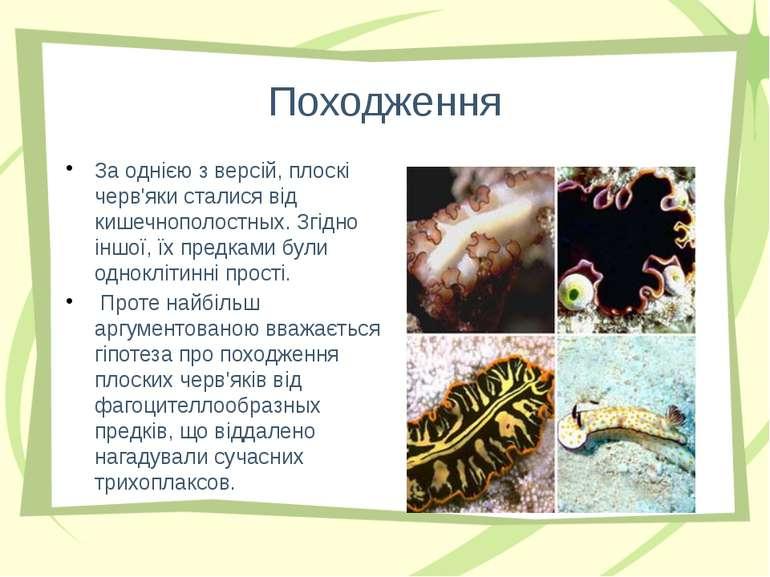 Походження За однією з версій, плоскі черв'яки сталися від кишечнополостных. ...