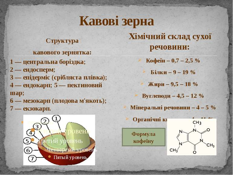 Структура кавового зернятка: Кофеїн – 0,7 – 2,5 % Білки – 9 – 19 % Жири – 9,5...