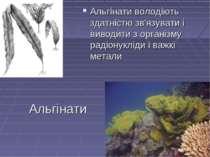 Альгінати Альгінати володіють здатністю зв'язувати і виводити з організму рад...