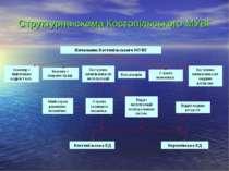 Структурна схема Костопільського МУВГ Інженер з підготовки кадрів І кат. Служ...