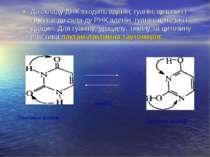 До складу ДНК входять аденін, гуанін, цитозин і тимін. а до скла ду РНК адені...