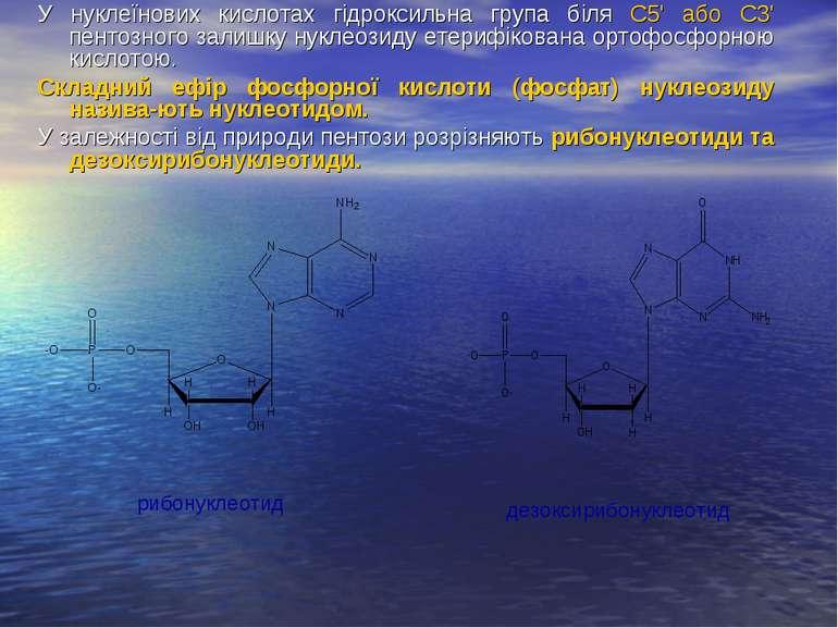 У нуклеїнових кислотах гідроксильна група біля С5' або С3' пентозного залишку...
