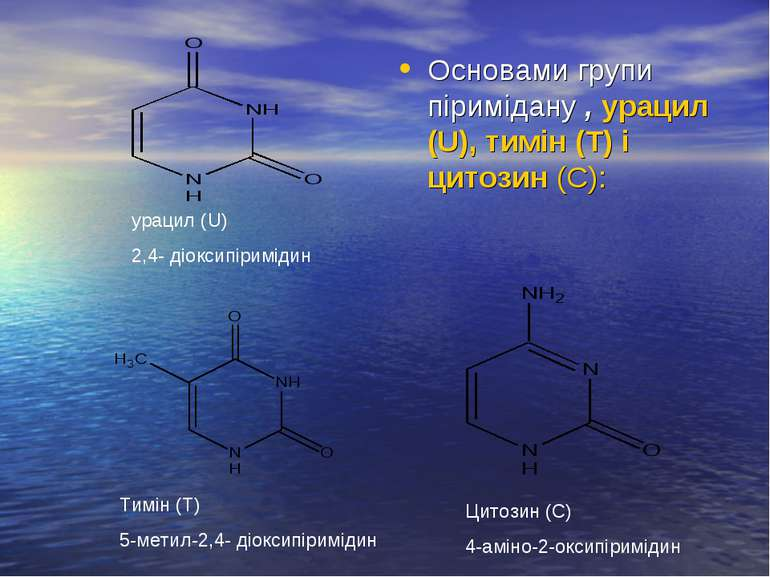 Основами групи піримідану , урацил (U), тимін (Т) і цитозин (С): урацил (U) 2...