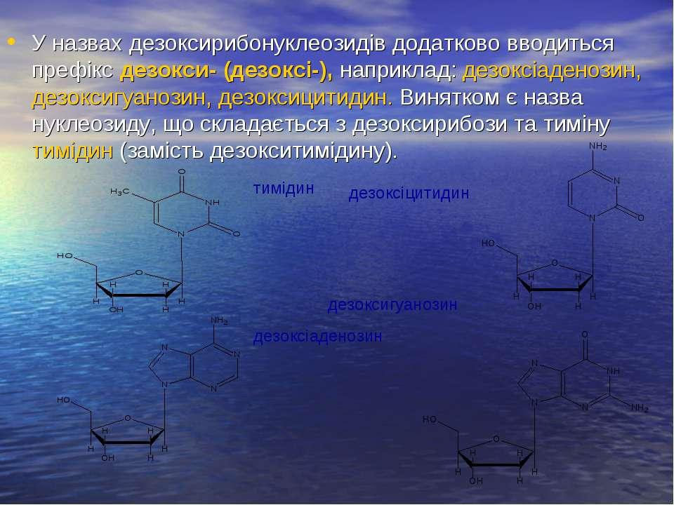 У назвах дезоксирибонуклеозидів додатково вводиться префікс дезокси- (дезоксі...