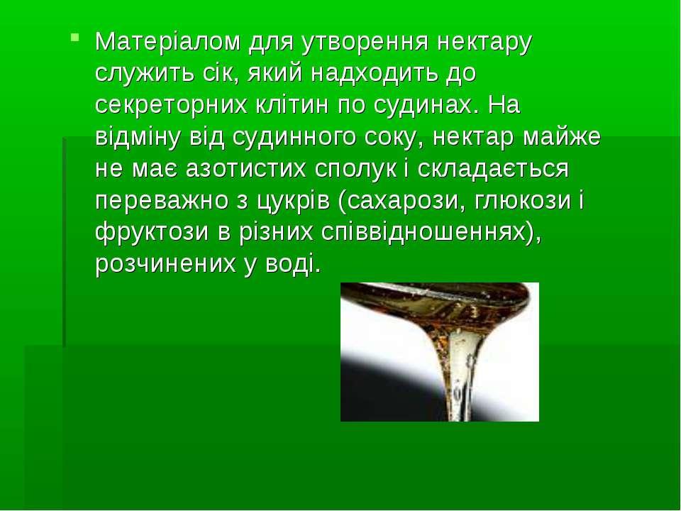 Матеріалом для утворення нектару служить сік, який надходить до секреторних к...