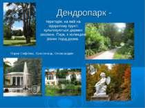 Дендропарк - Парки Софіївка, Тростянець, Олександрія територія, на якій на ві...