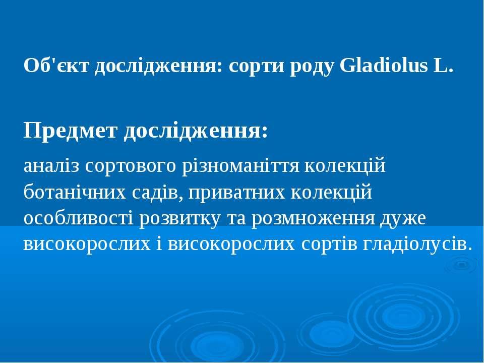 Об'єкт дослідження: сорти роду Gladiolus L. Предмет дослідження: аналіз сорто...