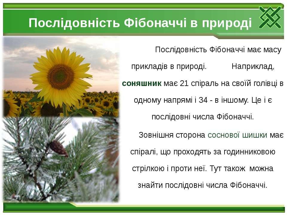 Послідовність Фібоначчі в природі Послідовність Фібоначчі має масу прикладів ...