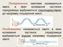 Поперечними хвилями називаються хвилі, в яких коливання частинок середовища в...