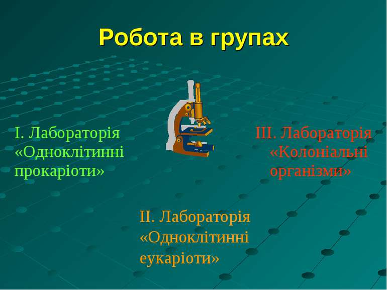 Робота в групах ІІ. Лабораторія «Одноклітинні еукаріоти» І. Лабораторія «Одно...
