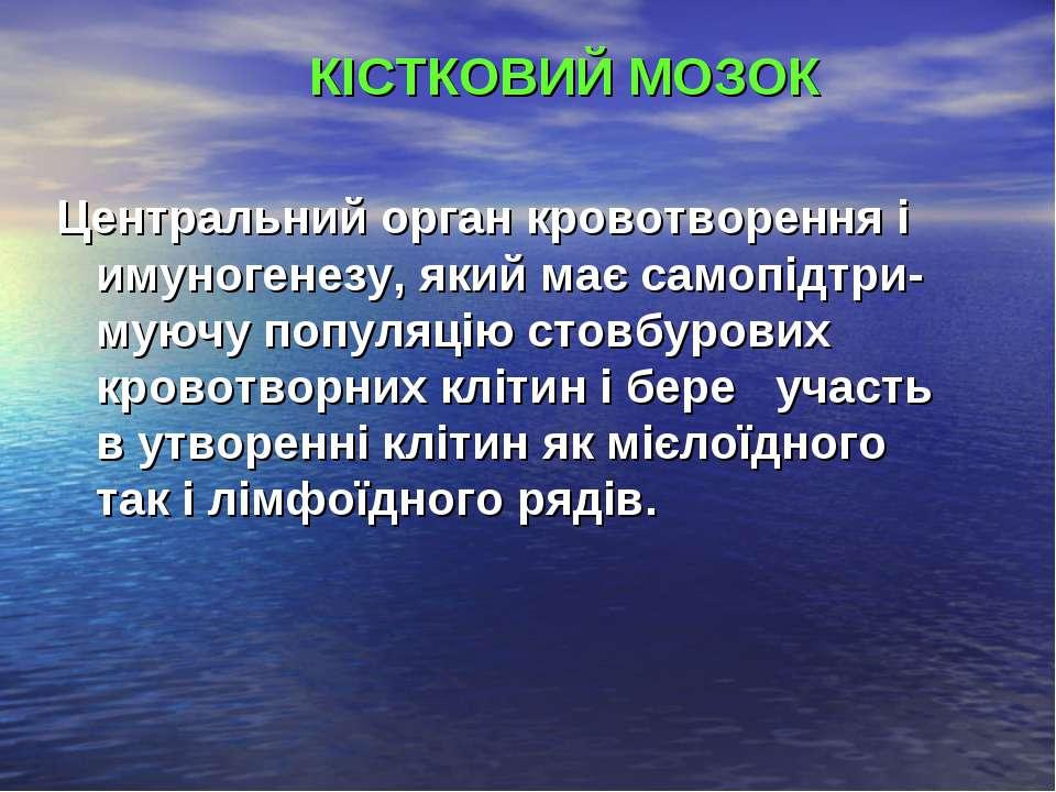 КІСТКОВИЙ МОЗОК Центральний орган кровотворення і имуногенезу, який має самоп...