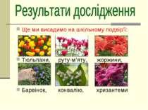 Ще ми висадимо на шкільному подвір'ї: Тюльпани, руту-м'яту, жоржини, Барвінок...