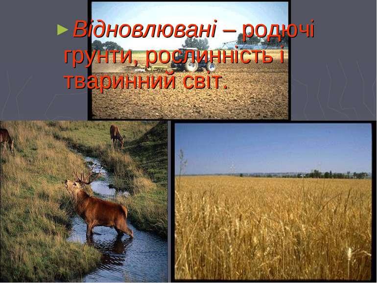 Відновлювані – родючі грунти, рослинність і тваринний світ.