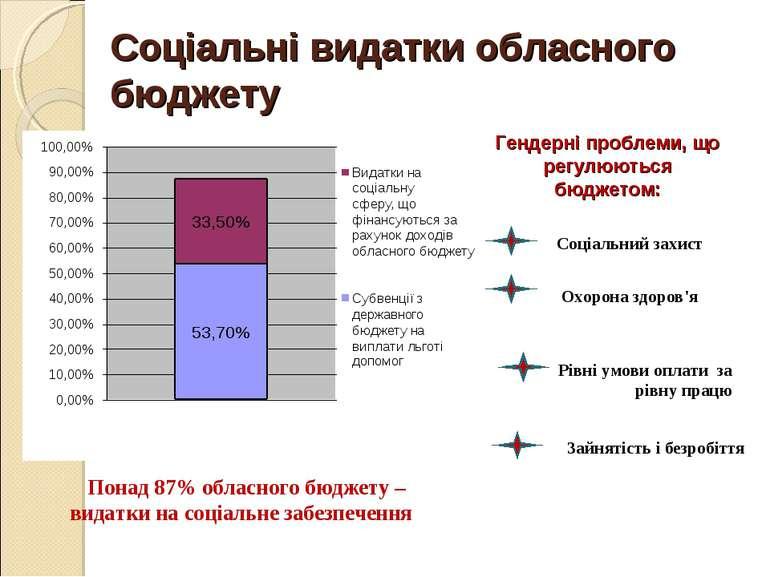 Понад 87% обласного бюджету – видатки на соціальне забезпечення Гендерні проб...