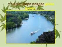У Чорне море впадає річка Дунай.