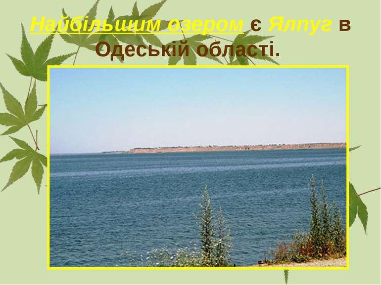 Найбільшим озером є Ялпуг в Одеській області.