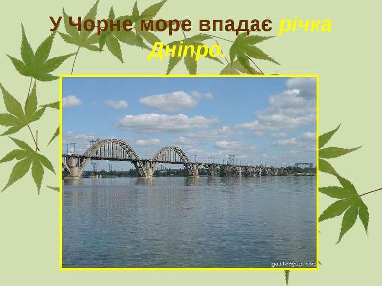 У Чорне море впадає річка Дніпро.