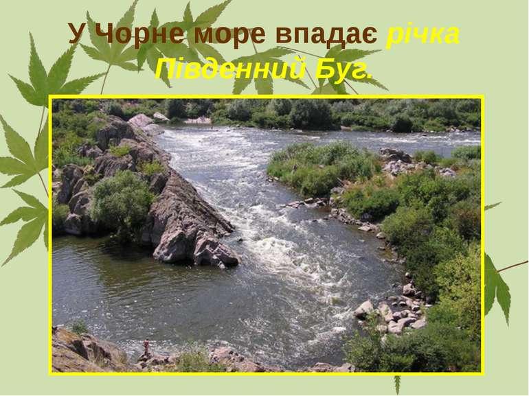 У Чорне море впадає річка Південний Буг.