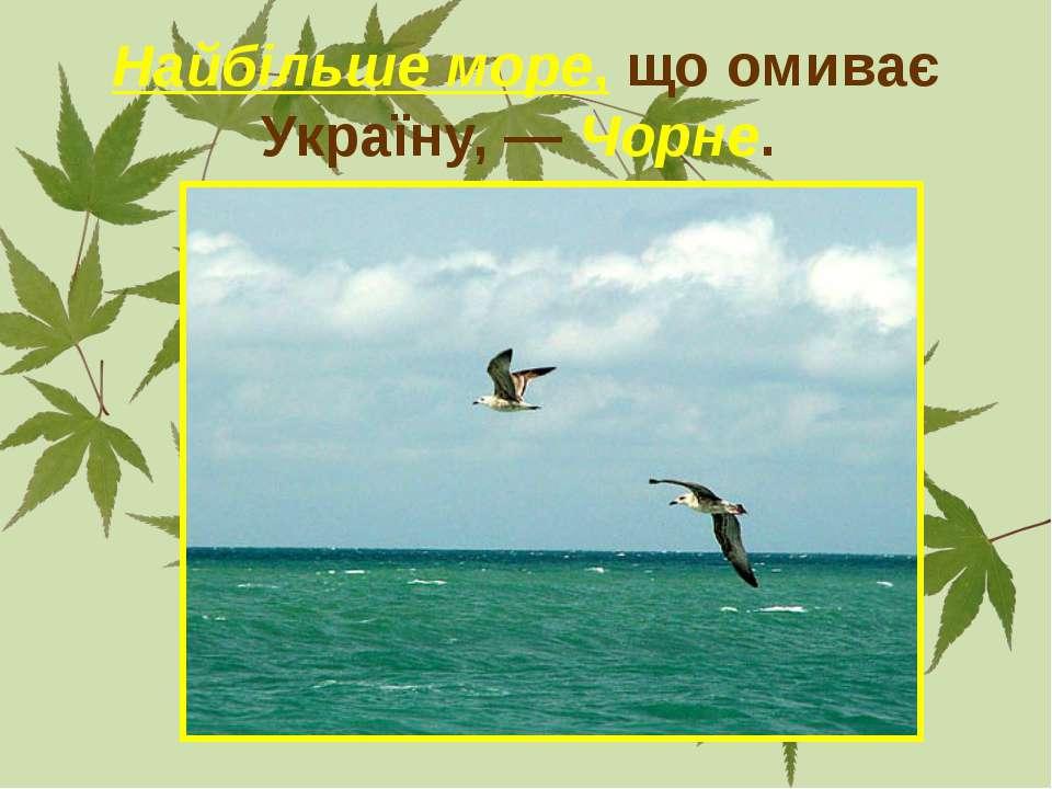 Найбільше море, що омиває Україну, — Чорне.