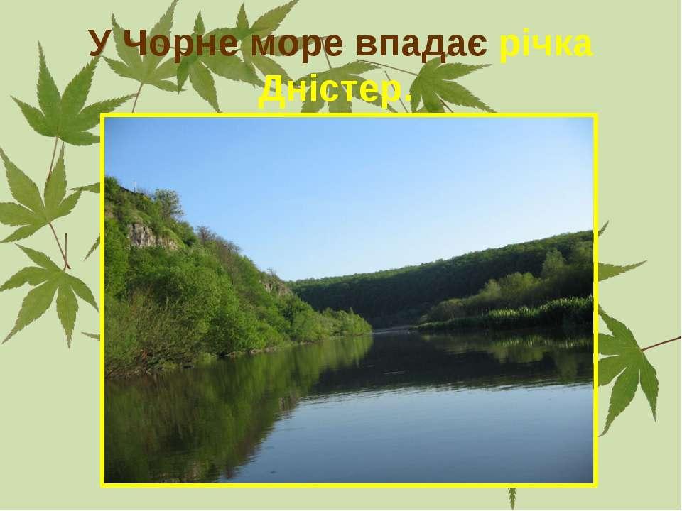 У Чорне море впадає річка Дністер.