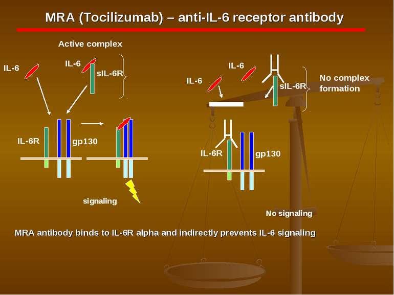 MRA (Tocilizumab) – anti-IL-6 receptor antibody MRA antibody binds to IL-6R a...
