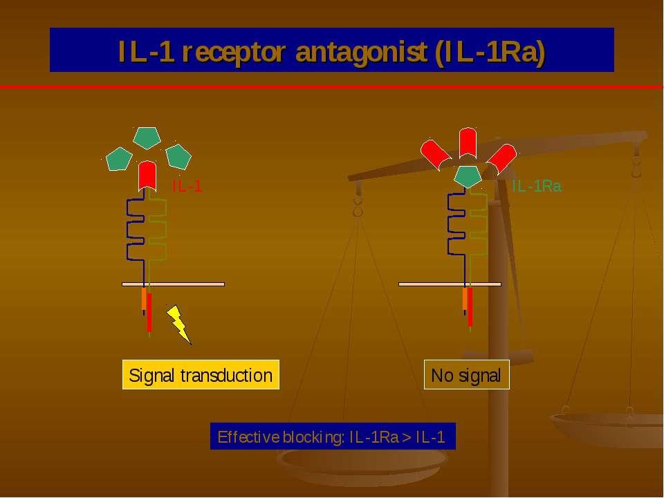 IL-1 receptor antagonist (IL-1Ra) Signal transduction No signal IL-1 IL-1Ra E...