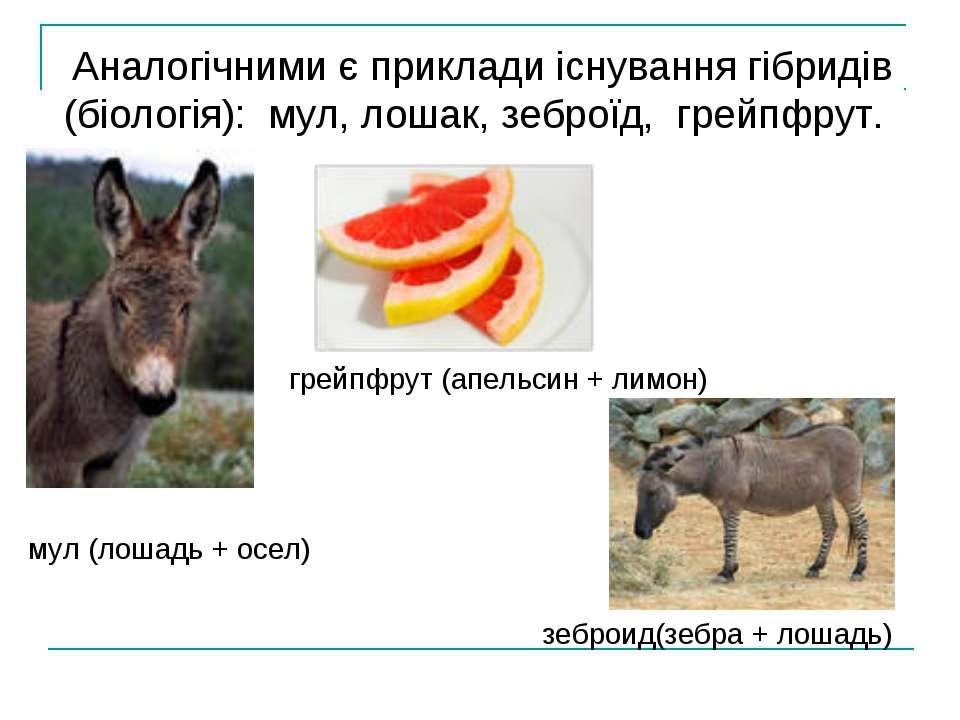 Аналогічними є приклади існування гібридів (біологія): мул, лошак, зеброїд, г...