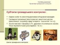 Watchdog організації Організації громадського контролю Суб'єкти громадського ...