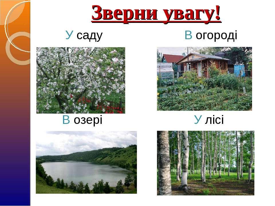 Зверни увагу! У саду В огороді В озері У лісі