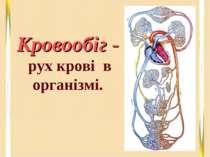 Кровообіг - рух крові в організмі.