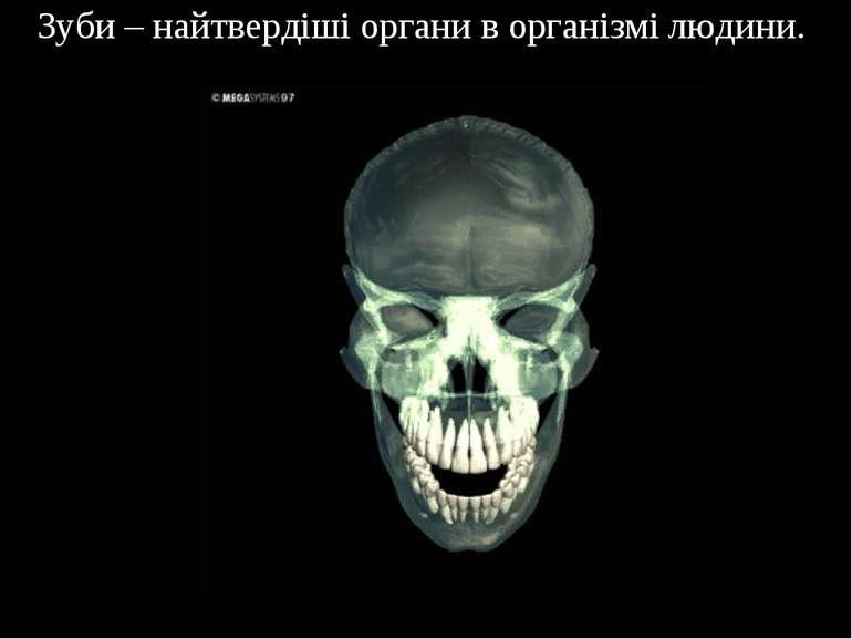 Зуби – найтвердіші органи в організмі людини.
