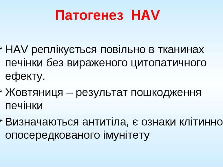 Патогенез HAV HAV реплікується повільно в тканинах печінки без вираженого цит...